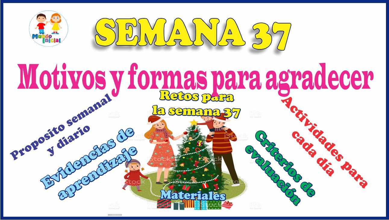 SEMANA 37 – TV –  Motivos y formas para agradecer